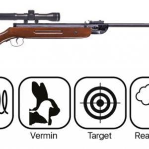 Budget Rifles